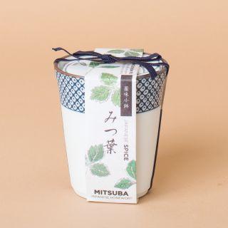 """Noted Yakumi Mitsuba """"Japanese Honeywort"""""""