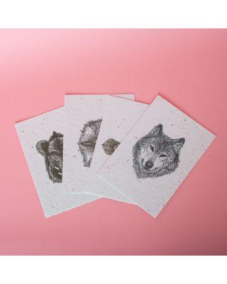 Seedpaper Waldtiere