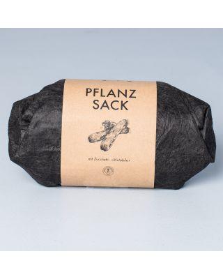 Gorilla Gardening Pflanzsack Zucchetti Mutabile